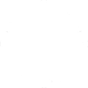 massimo_logo_white